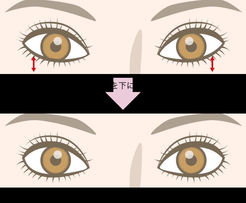 つり目とタレ目の比較